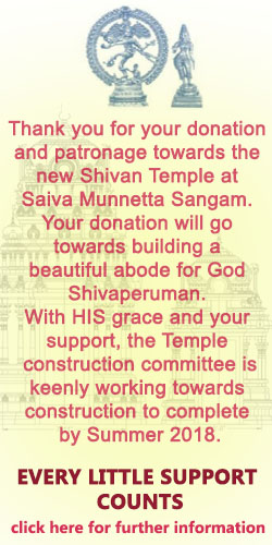 sms-donation-ad-en